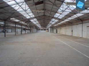 Opslagruimtes te huur op een goede ligging te Torhout. <br /> <br /> Verschillende modules en oppervlaktes beschikbaar. <br /> <br /> Oppervlaktes