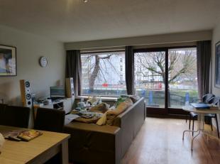 ruime studio gelegen aan de coupure voorzien van alle nodige comfort keuken en leefruimte