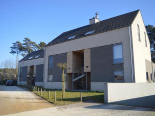 Duplex-appartement, gelegen tegen natuurgebied, met een ruim en zuidelijk georiënteerd terras (26m²) op een goede ligging! Op het eerste ver