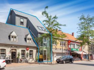 Horecazaak met woonstudio te koop in het centrum van Hulste met een nuttige oppervlakte van ca. 540m².<br /> <br /> Indeling: <br /> *Gelijkvloer