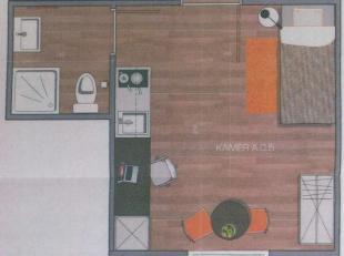 Recente studentenstudio met parkeerplaats op de gelijkvloerse verdieping. Nabij de hogescholen, rand Brugge.<br /> Bestaande uit een modern en eigenti