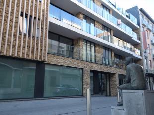 Gelegen aan de St. Rochuskerk in de topresidentie 'Zenith' ligt dit exclusief appartement op de derde verdieping!<br /> Het appartement omvat een unie