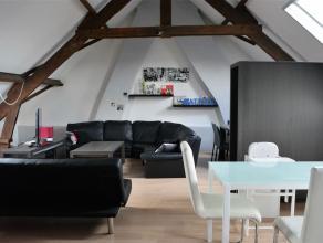 Knusse dakflat. Dit gezellig appartementje onder het dakgebinte bestaat uit een inkomhal  één tweepersoonskamer  een ruime woonkamer met