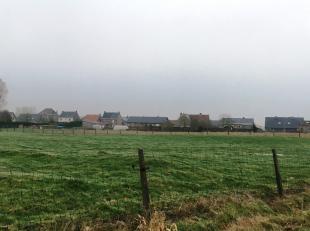 Danneels realiseert een nieuwe verkaveling in Krombeke, deelgemeente van Poperinge. De woonbuurt is gelegen tussen de Molenstraat en de Waaienburgsewe