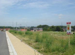 Danneels verkoopt het laatste villaperceel ter hoogte van de Schoolgatweg in Halle. Deze bouwgrond is goed gelegen, aan de rand van een nieuwe verkave