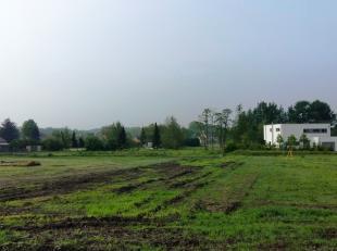 In Beerzel (Putte) biedt Danneels 5 nieuwebouwgronden te koop aan voor open bebouwing. Hier realiseren we een uitbreiding van de verkaveling Kievitvel