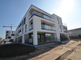 Dit nieuwbouwappartement is gelegen op de gelijkvloerse verdieping van een kleinere residentie. Vanuit de lichtrijke leefruimte is het zalig vertoeven