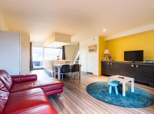 Luxueus hypergeïnstalleerde keuken2 leefterrassen> 100 vierkante meter woonoppervlakte3 slaapkamers2 badkamers (met inloopdouche)Fietsenbergin