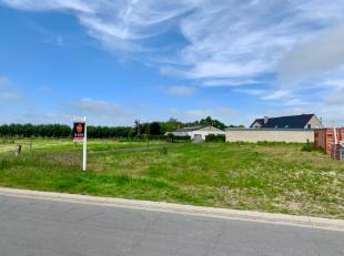 Terrain à vendre                     à 8820 Torhout