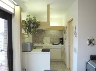 Gezellig gemeubelde studio aan de zonnekant.<br /> De studio omvat een leefruimte, open keuken, slaap hoek, badkamer met ligbad en terras. Zonnige lig