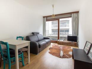 Ruime, totaal gerenoveerde studiobestaand uit:<br /> Lichtrijke leefruimte<br /> Gloednieuwe, open keuken<br /> Badkamer met douche<br /> Gloednieuwe