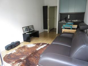Zongerichte studio gelegen in het centrum van Westende-Bad. Omvat een lichtrijke leefruimte met een nieuw open keukentje en een badkamer met douche/zi