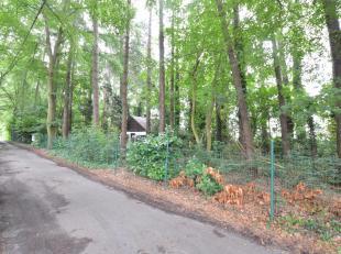Zeer rustig gelegen perceel grond van 2040 m² te Jabbeke. Perceel van 110m bij 18m op zeer rustige locatie in bosrijk gebied. (Gvg, Ag, Gdv, Gvkr