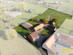Hoeve en tal van bijgebouwen op 11477m² met ideale ligging te Lichtervelde. Deze te renoveren hoeve bevat naast een woonhuis ook een hangaar, gar