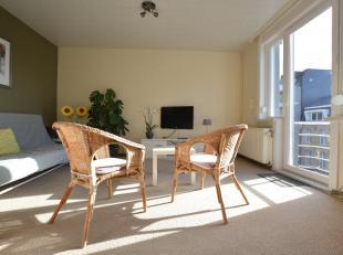 Gezellig appartement op de tweede verdieping met een slaapkamer in het centrum van Middelkerke. Ingedeeld met inkom, living, open keuken ingericht met