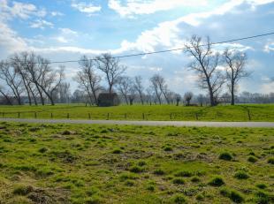 Een landelijk stuk bouwgrond te koop in Roksem. Met zijn unieke ligging dicht bij scholen en openbaar vervoer biedt het veel mogelijkheden. Voor meer