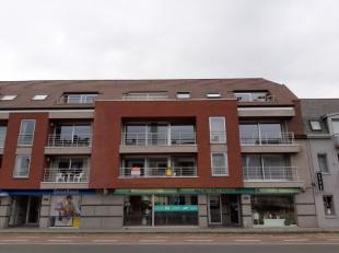Centraal gelegen heel ruim en energiezuinig APPARTEMENT op de 1ste verdieping met een oppervlakte van 145.6m² te Sint-Andries. Indeling : - inkom