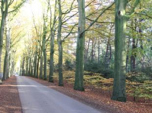 Exclusief stuk bouwgrond met een totale oppervlakte van 8299 m2 te Hertsberge (Oostkamp). Het perceel beschikt over meer dan 100 meter straatbreedte l