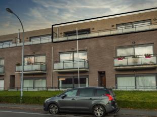 Dit zeer goed onderhouden en ruim appartement (tot. opp. 163m²) omvat inkom met vestiaire en apart toilet. Ruime woonkamer met gaskachel in de zi