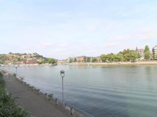 JAMBES, en bord de Meuse, superbe STUDIO (1sdb) sis au rez-de-chaussée d'une résidence tranquille. Il se compose d'un hall d'entr&eacute