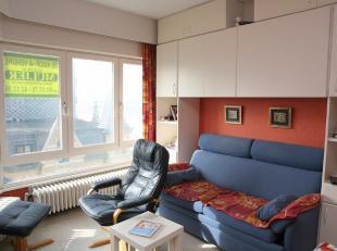 APPARTEMENT TE KOOP TE DE PANNE : Zijdelings zeezicht vanuit de woonkamer, keukenhoek, badkamer en 1 slaapkamer.  Mogelijkheid tot aankoop garage onde