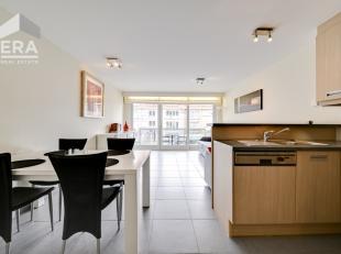 Indeling: Inkomhal=slaapkamer (kast met 2X 1p. Bed). Living (divan-lit) met ingerichte keuken, badkamer, terras, ind. kelder (prijs 8.000 euro) en gem
