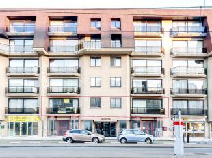 Reuze ruim appartement van 220 m² te verhogen met 130 m² terrassen, een unicum dus. De woonkamer van om en bij de 90 m² geeft uit op he