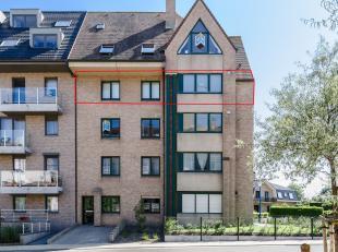 Een pareltje van een appartement met bovendien een topligging en meest-fantastische oriëntatie. De hele dag zongericht, vensters op 3 gevels waar