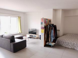 Deze prachtige studio bevindt zich op de derde verdieping en bestaat uit een inkom, leef/slaap- ruimte en keuken. De badkamer heeft een douche en lava