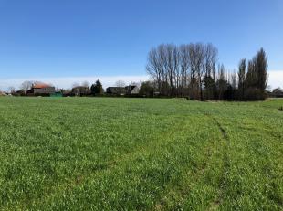 Partij landbouwgrond (vrij van gebruik) met een oppervlakte van 2ha 25a 46ca. Gelegen tussen de Meulebeeksesteenweg (Tielt) en de Sint-Amandsstraat (P