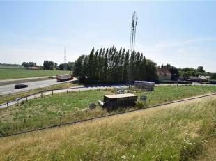 ARDOOIE : 2.419 m² landbouwgrond met opbrengst (gsm-mast) langs de E 403.