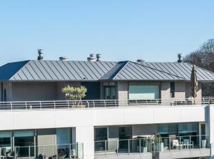 DOMEIN 'T EYCKENBOS - Een unicum in een prachtige groene omgeving !<br /> Exclusief penthouse op een privaat domein, palend aan het Sterrebos, vlot be