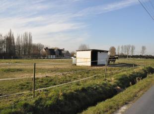 Weide te huur van +/- 2500m² te Oekene.Grondlasten ten laste van huurder.