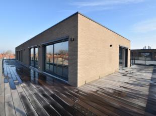 Unieke penthouse op een boogscheut van de grote markt Menen met aangenaam zicht.<br /> Dit exclusief nieuwbouw appartement is als volgt ingedeeld:<br