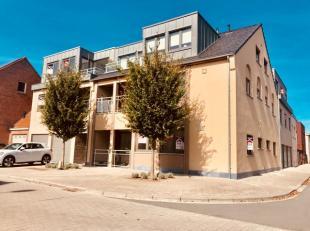 Appartement te huur                     in 8940 Wervik