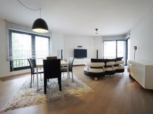 Stijlvol energiezuinig en instapklaar gemeubeld appartement met één slaapkamer, residentieel gelegen langsheen Ter Platen, omgeving Muin