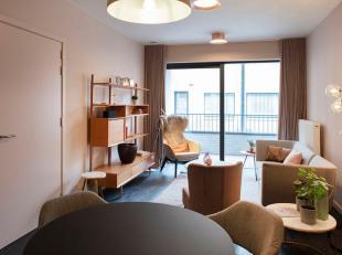 Appartement à louer                     à 9961 Boekhoute