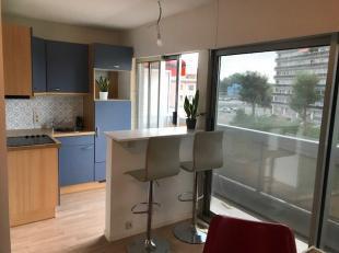 Trendy Studio nabij station, scholen en centrum van Dendermonde, 2de verdiep : terras zuid geöriënteerd, keukenhoek, living met laminaat, in