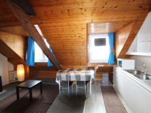 Ruime dakstudio op 4e verdieping (geen lift). Omvattende leefruimte met open ingerichte keuken (vuurplaat, frigo en micro-wave), badkamer (douche en t