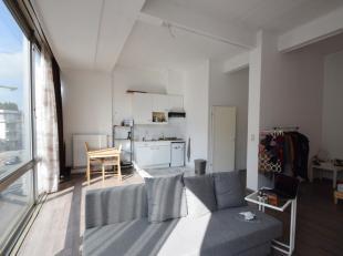 Deze studio (1° V) met hoge plafonds en grote ramen nabij Coupure bestaat uit heel lichtrijke leefruimte met slaaphoek, open keuken en badkamer. D