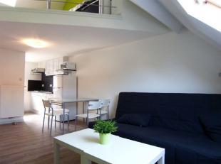Deze duplex studio is gemeubileerd! Centraal gelegen, nabij Rooigemlaan. Deze studio bestaat uit lichtrijke leefruimte met open ingerichte keuken, aan