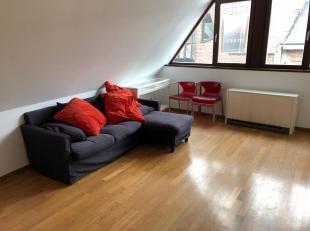 Het appartement is gelegen in het historisch centrum van Antwerpen, in een rustige straat. Winkels en openbaar vervoer zijn op wandelafstand.<br /> He