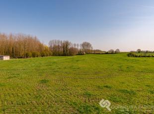 Deze mooie villa heeft een tijdloze look en vinden we in Vrijheid nr. 62 in Ophasselt, een deelgemeente van Geraardsbergen, in de omgeving van alle gr