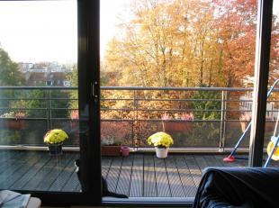 Montgomery - next to the College St. Michel, in a very quiet street, very nice penthouse (2001) with lots of light on 4th floor - 130 m² - entran