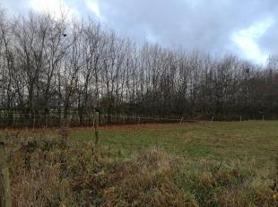 Weiland met erop staande boomgaard (fruitbomen), gelegen in uitbreidingsgebied. Ontsluiting via Vlasstraat.