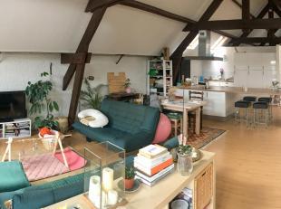 Appartement à louer                     à 2060 Antwerpen