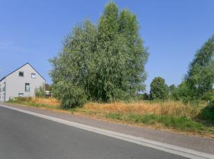 In de landelijke gemeente Borsbeke laten wij u graag kennismaken met deze bouwgrond.<br /> <br /> Rustig gelegen in een recente verkaveling met zeer g