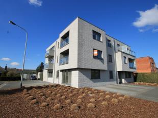 Volledig opgeschilderd, ruim en prachtig gelegen nieuwbouwappartement op wandelafstand van het centrum van Eeklo. De rustige ligging vlakbij het centr