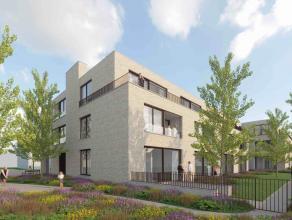 Appartement te huur in 2150 Borsbeek