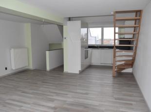 Instapklaar éénslaapkamer-appartement met zonnig dakterras in een gerenoveerde herenwoning. Gelegen in het centrum van Eeklo, gemakkelij